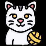 jouet-chat